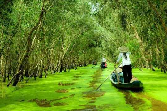 Kelione i Vietnama