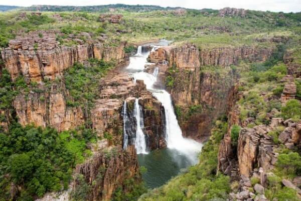 Kakadu parkas Australija